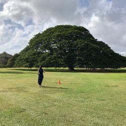 hawaii honeymoonの写真 4枚目