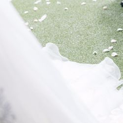 フラワーシャワーの写真 2枚目