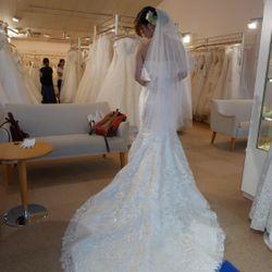 ドレス選びの写真 6枚目