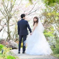 lucy_weddingさんのプロフィール写真