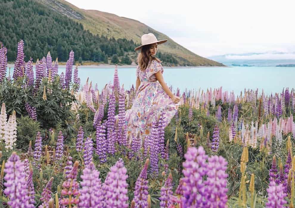 一生の思い出に!ニュージーランドへ新婚旅行♪のカバー写真 0.705050505050505