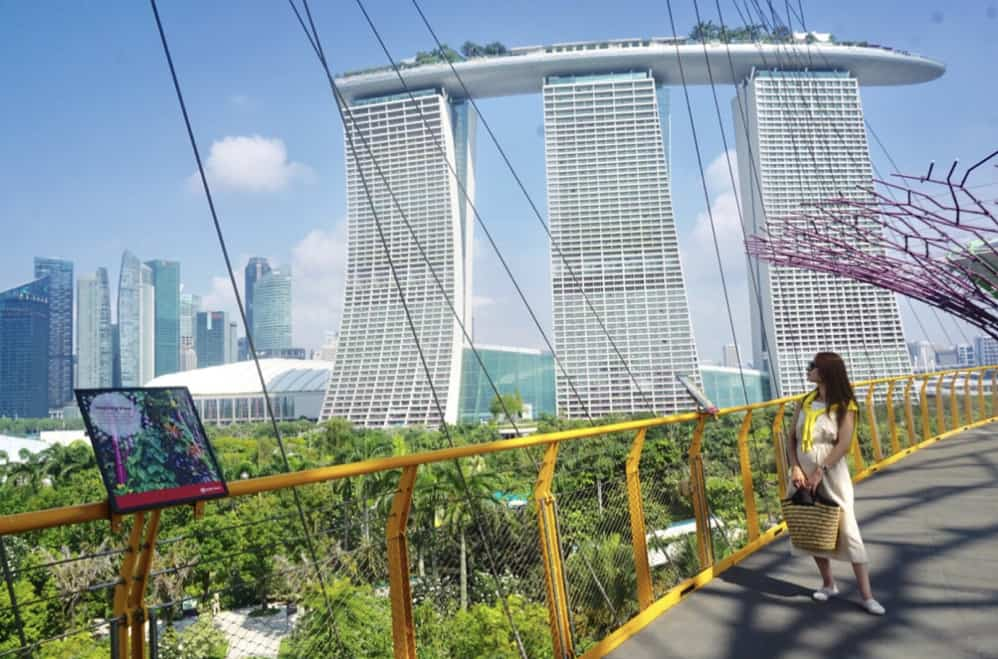 近代的な景色が魅力!シンガポールへ新婚旅行に行ってみたい♡のカバー写真