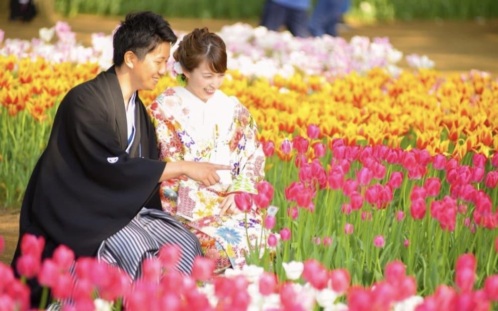 春婚花嫁に♡【チューリップ】がテーマのウェディングアイディアのカバー写真 0.6252525252525253