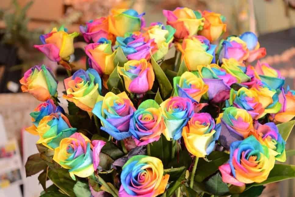 レインボーローズの花束で結婚式を華やかに♡花言葉や作り方もご紹介のカバー写真
