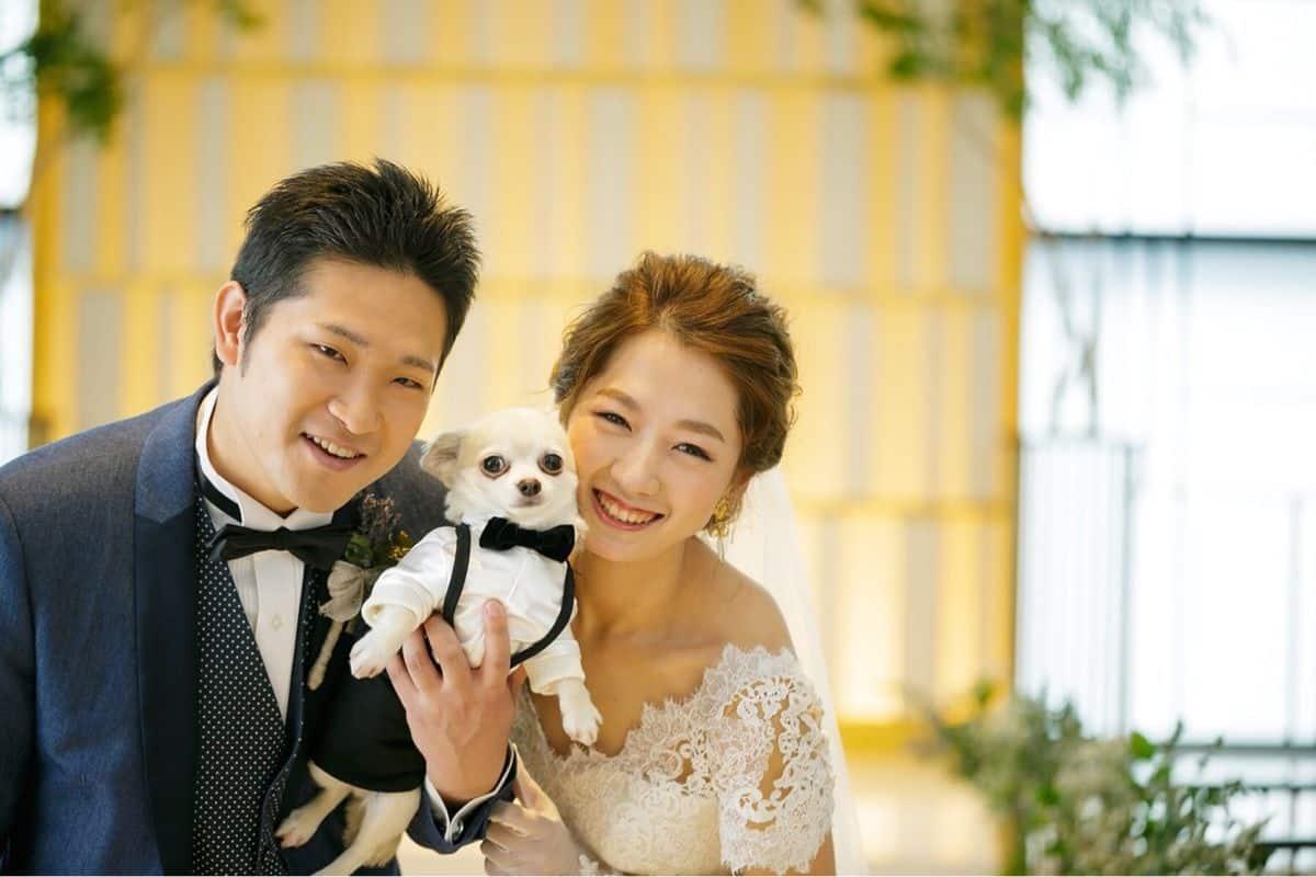 リングドックだけじゃない*ペット参加型の結婚式演出11選のカバー写真 0.6666666666666666