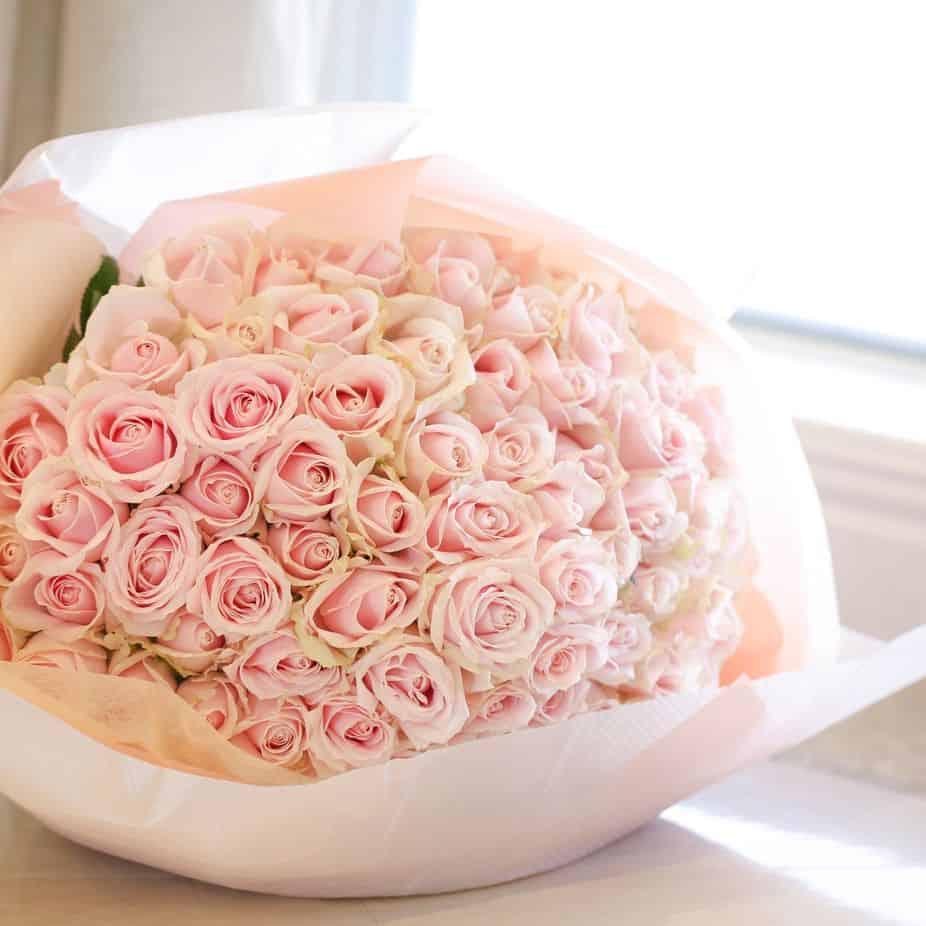 ピンクのバラの花言葉は?色や本数で意味が変わるバラをプレゼントに♡のカバー写真 1